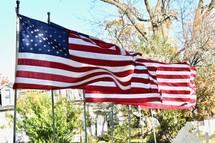 American flags lining a sidewalk