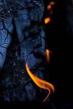 Flames of a wood burning fire.