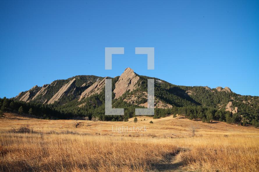 mountain peak  and open field