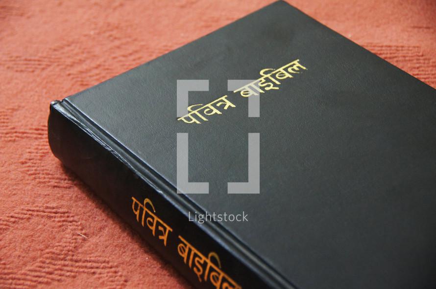 Hindi Bible