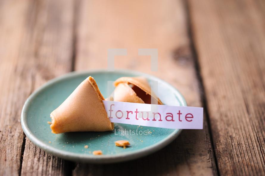 fortune cookie - fortunate
