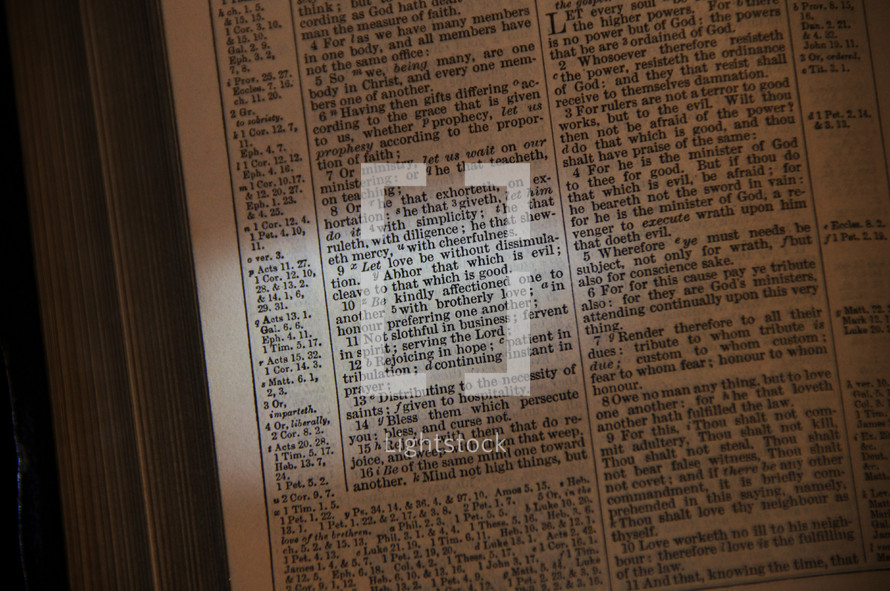 Open Bible book