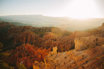 sunlight on a red rock canyon