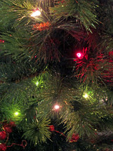 Closeup of Christmas tree branches with red and white lights.