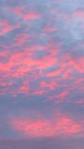 Pink winter sunset.