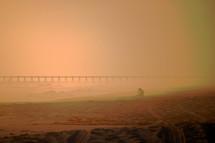 Girl in golden fog on the beach.