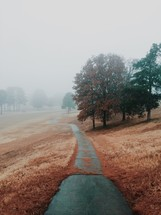 fog and trees and a golf cart path