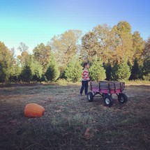 boy child pulling a wagon and a pumpkin