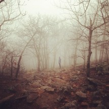 man standing in a foggy forest
