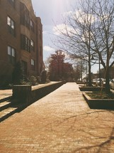 brick sidewalk outdoors and bare trees