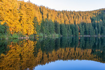 pond in black forest in autumn