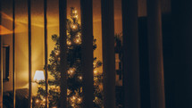 view of a Christmas tree through a window