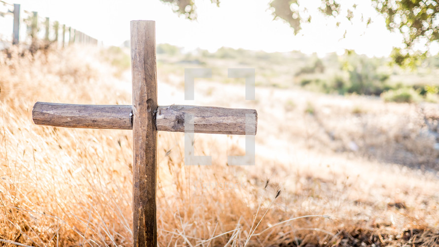 wooden cross in tall brown grasses