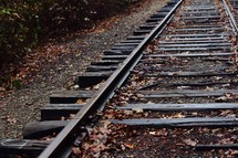 fall leaves on train tracks