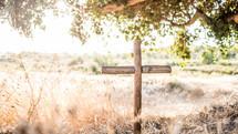 wooden cross under a tree