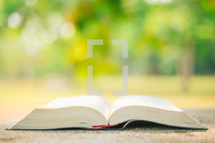open Bible and green bokeh background