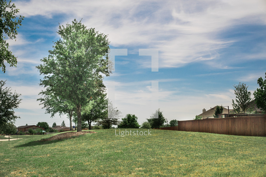green grass and fence line in a neighborhood