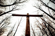 cross in a forest