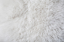 Clean and picked, white sheep fur background.