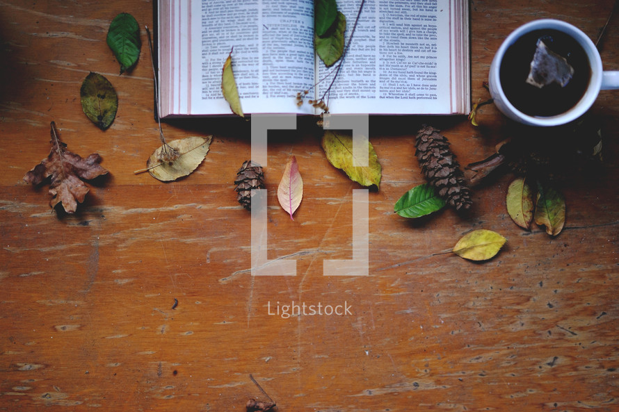 fall leaves on an open Bible and mug of hot tea
