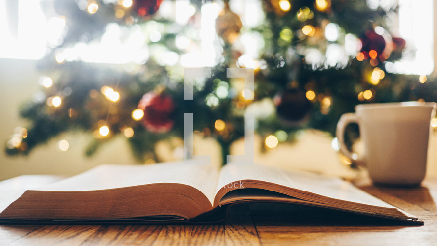 coffee mug and Bible in front of a Christmas tree