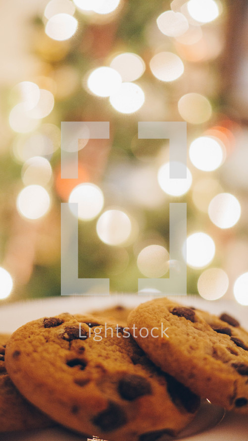 chocolate chip cookies in front of a Christmas tree