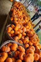 baskets of mini pumpkins