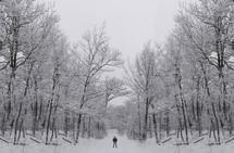 man in a winter scene
