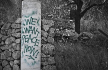 we want peace now graffiti