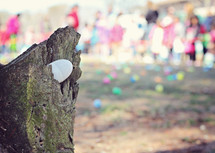 egg in a stump during an Easter egg hunt
