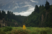 a woman standing in a valley surrounded by forest and mountains