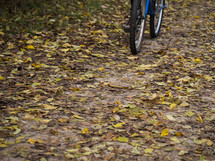 riding a bicycle on fall leaves