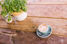 cappuccino in a mug on a table and house plant