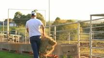a farmer feeding livestock hay