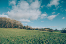 Open Field Leading to Woodland
