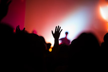 raised hands in an audience at a concert