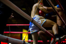 boxers in a boxing ring