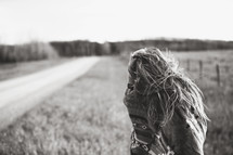 a woman in a shawl standing by a dirt road