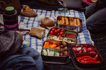 a picnic blanket laid out with various snacks