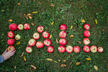 word fall in apples in the grass