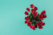 Red roses on an aqua background.