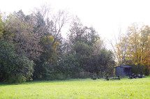 shed, picnic bench, and logs on green grass and fall trees