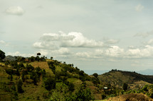 green slopes in Kenya