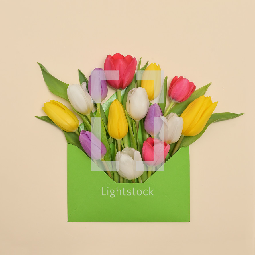 colorful tulips in an envelope