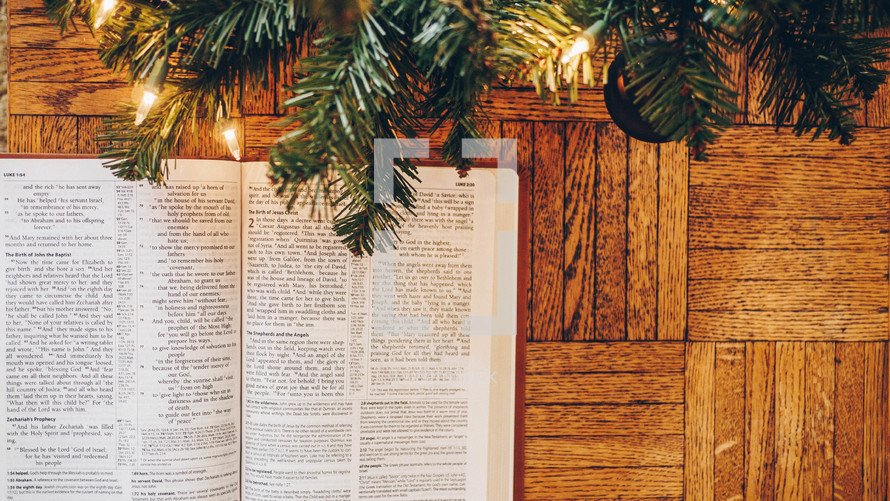 open Bible and Christmas tree