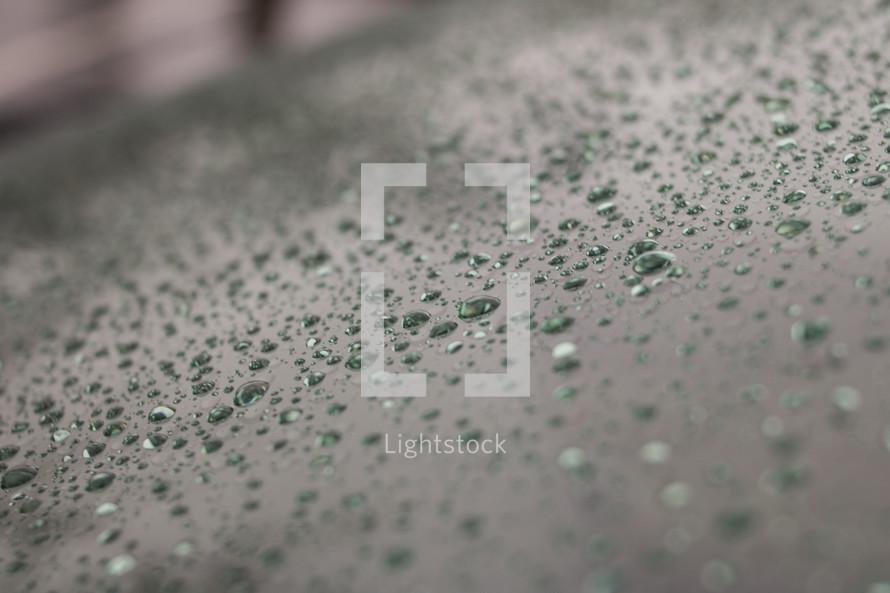 rain drops on a windshield