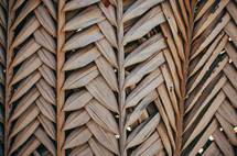 Dried palm leaves.