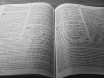 pages of the Bible