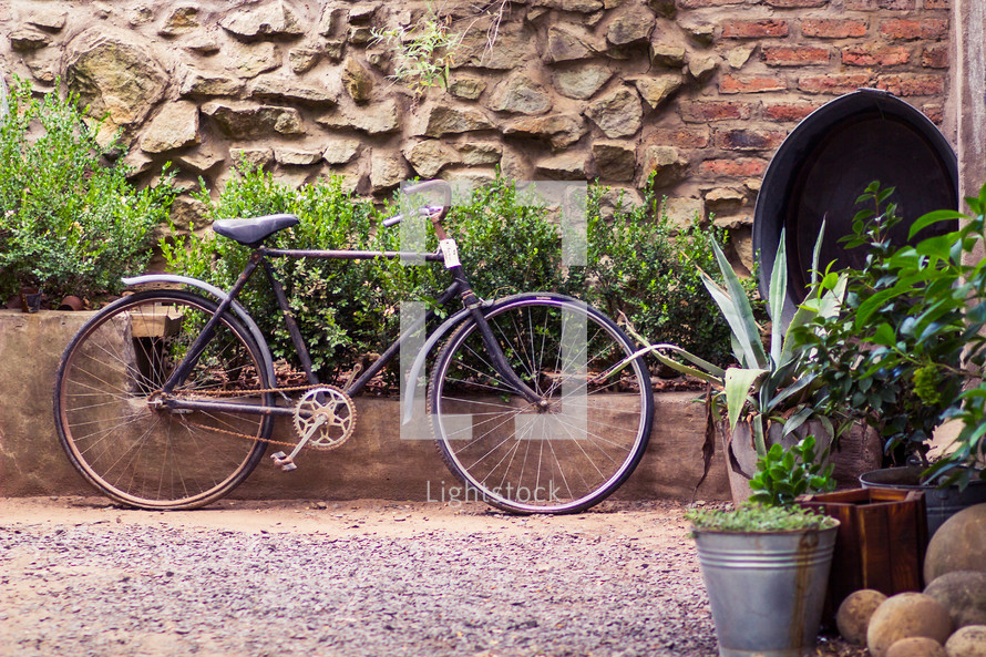 bicycle parked in a garden