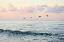 pelican flying over the ocean